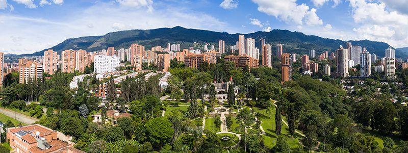 Arboles en Medellin