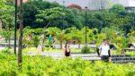 Medellin parques