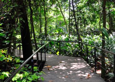 Lugares en Medellín para desconectarse y disfrutar de la naturaleza