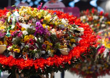 Feria de las Flores: tradición y patrimonio de Medellín