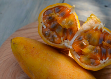 Exotic fruits of Medellin: a journey through its flavors